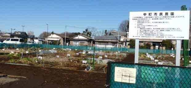 中町市民農園