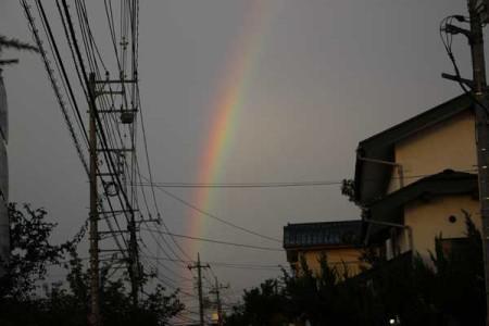 rainbow04IMG_2360