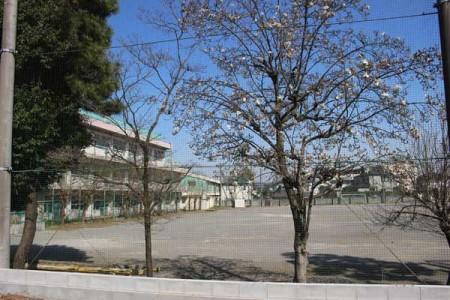 暫定開放される泉小校庭跡地