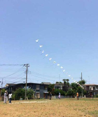 連凧(三好さん撮影)500