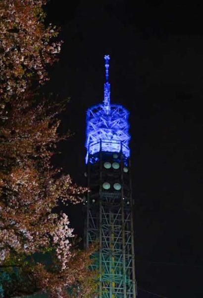 スカイタワー西東京と夜桜